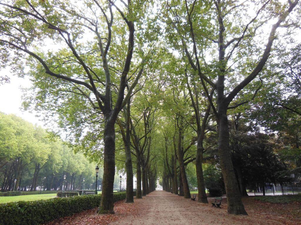 Parque Elisabeth es uno de los parques más bonitos de Bruselas