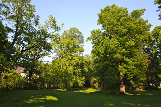 Parque Weilburg @Wikimedia