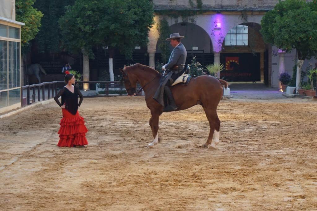 Espectáculo Ecuestre Pasión y Duende del Caballo Andaluz