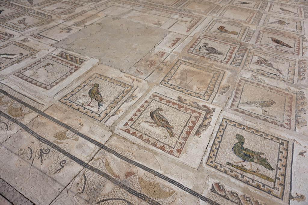 Mosaico de Los Pájaros
