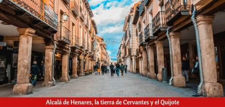 ¿Qué ver en Alcalá de Henares en un día?