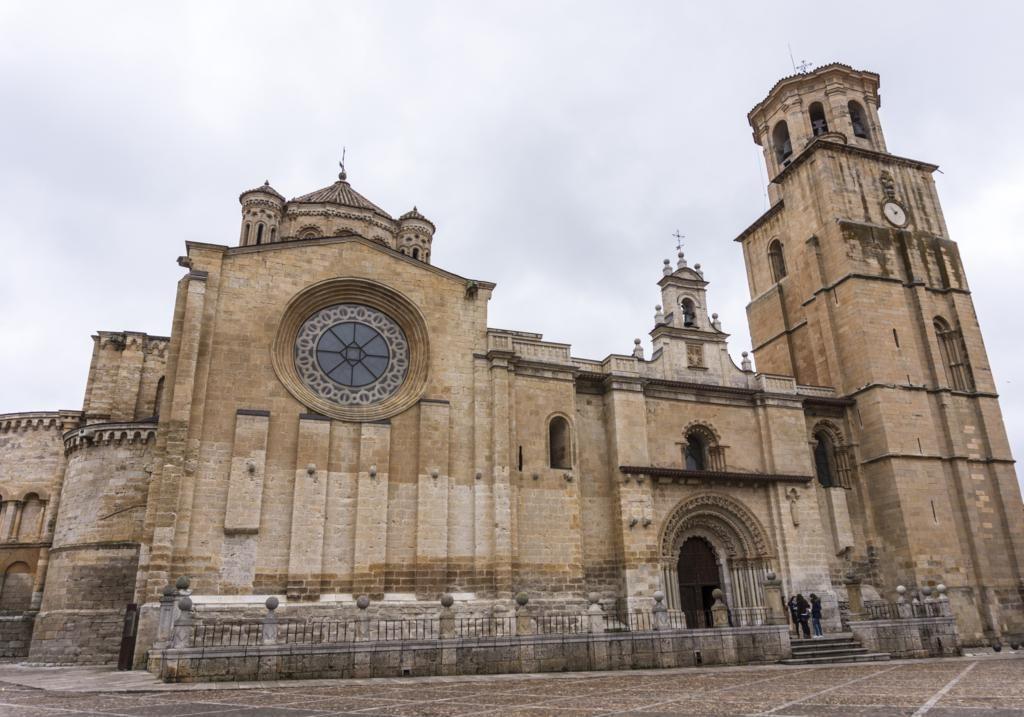 Toro (Zamora - Castilla Y León).