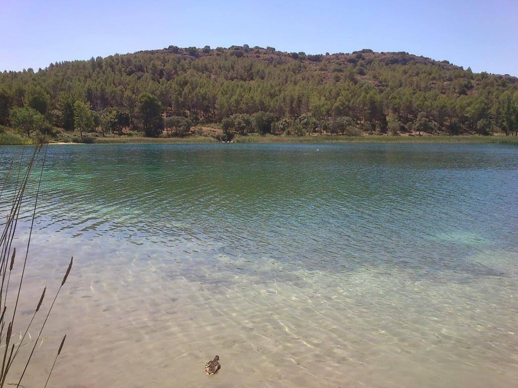 Aguas transparentes de color azul turquesa predominan en las lagunas