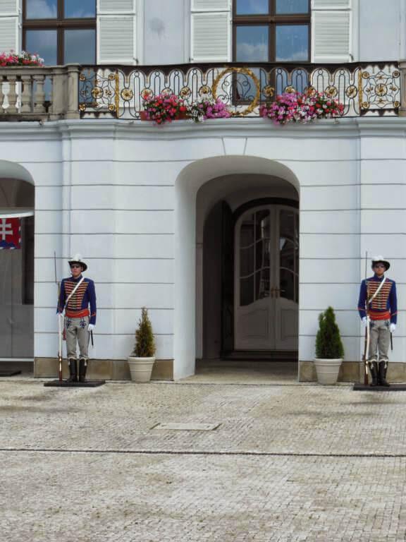Guardia del palacio
