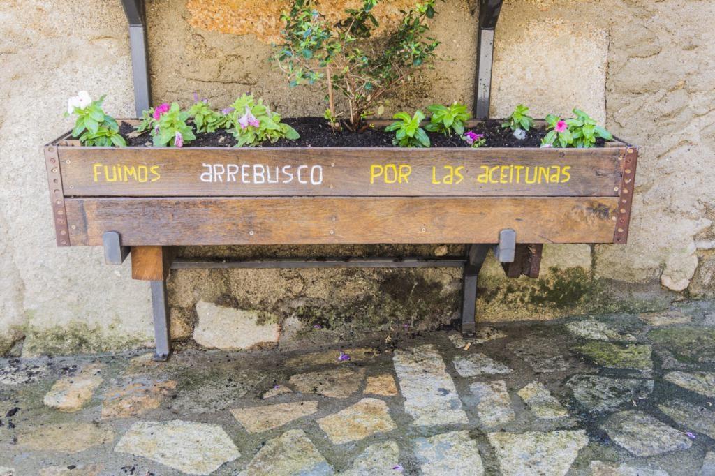 Elemento decorativo en San Martín del Castañar.
